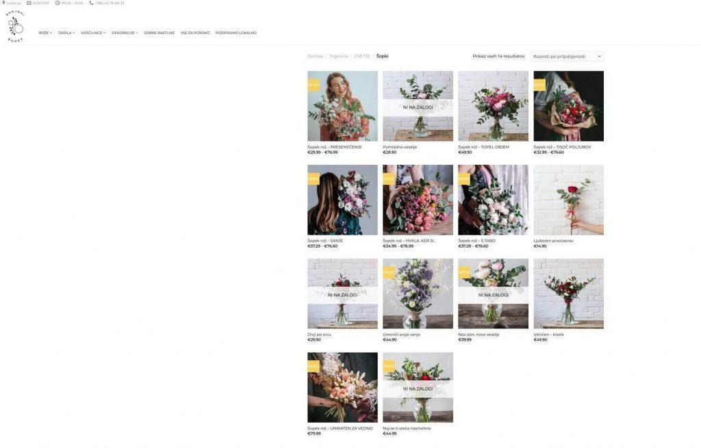 digitalni prodajni kanal seo sopki roz